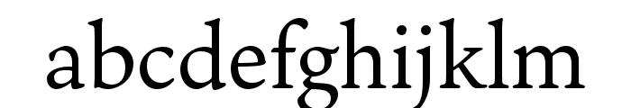 Ten Oldstyle Regular Font LOWERCASE
