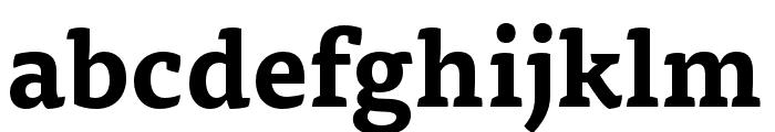 Tisa Pro Bold Font LOWERCASE