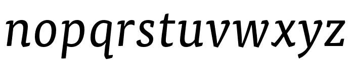 Tisa Pro Regular Italic Font LOWERCASE