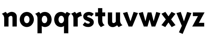 Triplex Sans OT Extrabold Font LOWERCASE