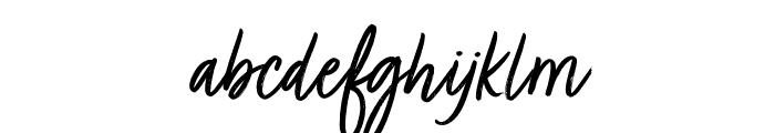 Turbinado Light Pro Light Font LOWERCASE
