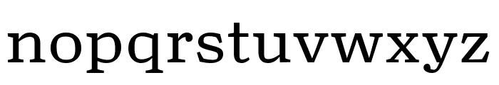 TurnipRE Regular Font LOWERCASE