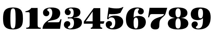URW Antiqua Alternative Super Bold Font OTHER CHARS