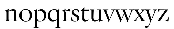 Verdigris MVB Pro Text Regular Font LOWERCASE