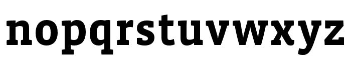Vista Slab OTCE Bold Font LOWERCASE