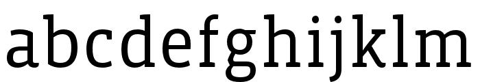 Vista Slab OTCE Book Font LOWERCASE
