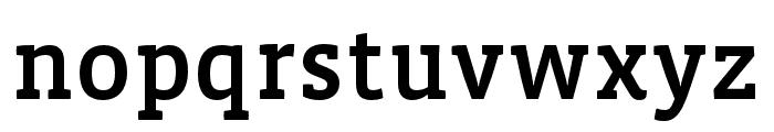 Vista Slab OTCE Medium Font LOWERCASE