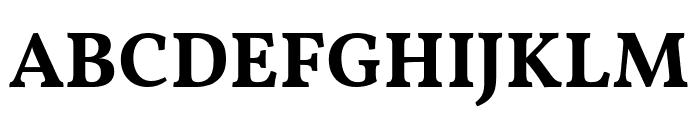 Vollkorn Bold Font UPPERCASE