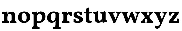 Vollkorn Bold Font LOWERCASE
