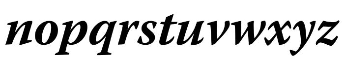 Warnock Pro Bold Italic Caption Font LOWERCASE