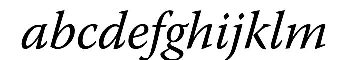 Warnock Pro Italic Display Font LOWERCASE