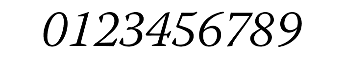 Warnock Pro Light Italic Display Font OTHER CHARS
