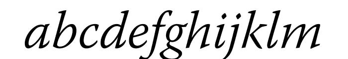 Warnock Pro Light Italic Display Font LOWERCASE