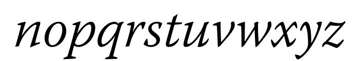 Warnock Pro Light Italic Subhead Font LOWERCASE