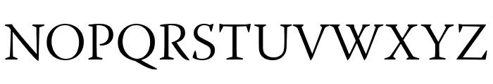 Warnock Pro Light Subhead Font UPPERCASE