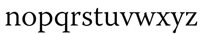 Warnock Pro Light Subhead Font LOWERCASE