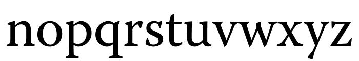 Warnock Pro Subhead Font LOWERCASE