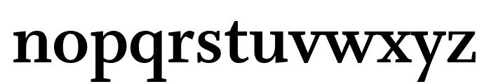 Whitman Bold Font LOWERCASE