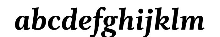 Whitman Extra Bold Italic Font LOWERCASE
