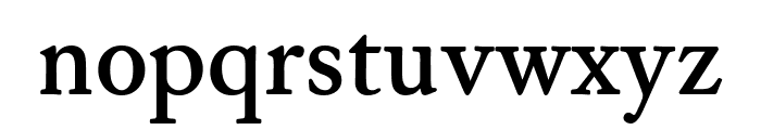 WilliamsCaslonText Bold Font LOWERCASE