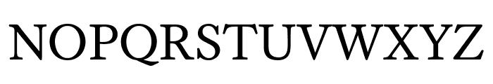 WilliamsCaslonText Regular Font UPPERCASE