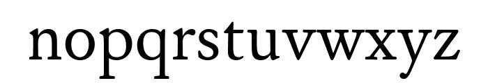 WilliamsCaslonText Regular Font LOWERCASE