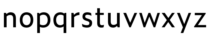 Zeitung Mono Pro Regular Font LOWERCASE