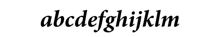AdobeArabic-BoldItalic Font LOWERCASE