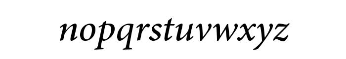 AdobeArabic-Italic Font LOWERCASE
