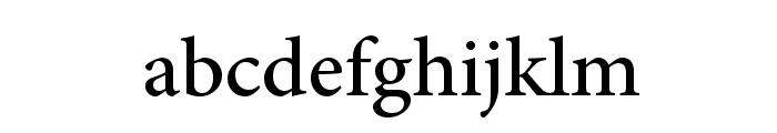 AdobeArabic-Regular Font LOWERCASE