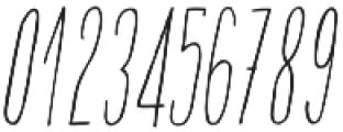 Adelaida Slanted otf (400) Font OTHER CHARS
