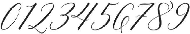 Adelicia Script Rough otf (400) Font OTHER CHARS