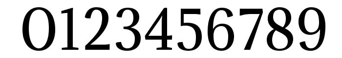 Adamina-Regular Font OTHER CHARS