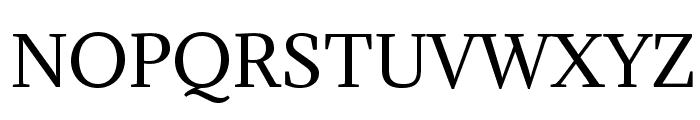 Adamina-Regular Font UPPERCASE