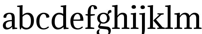 Adamina Font LOWERCASE