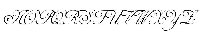 Adine Regular Font UPPERCASE