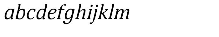 Adonis Italic Font LOWERCASE