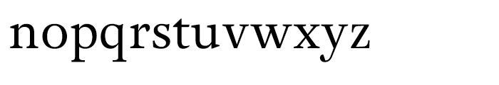 Adriane Text Regular Font LOWERCASE