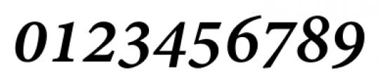 Adobe® Devanagari Bold Italic Font