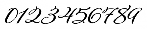 Adorn Garland Font OTHER CHARS