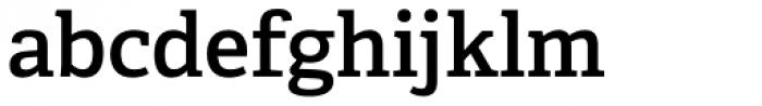 Adelle Basic SemiBold Font LOWERCASE