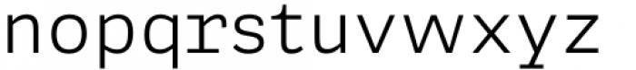 Adelle Mono Flex Light Font LOWERCASE
