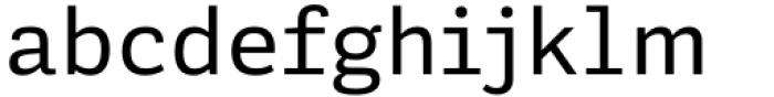 Adelle Mono Flex Regular Font LOWERCASE