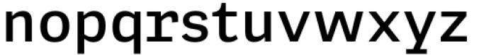 Adelle Mono Flex Semibold Font LOWERCASE