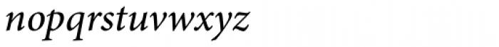 Adobe Arabic Italic Font LOWERCASE