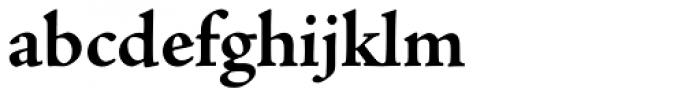 Adobe Jenson Pro Bold Font LOWERCASE