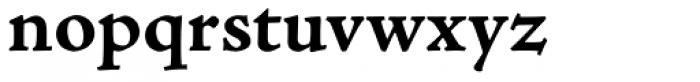 Adobe Jenson Pro Caption Bold Font LOWERCASE