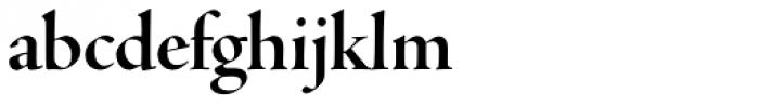 Adobe Jenson Pro Display Bold Font LOWERCASE