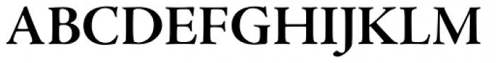 Adobe Jenson Pro SubHead Bold Font UPPERCASE