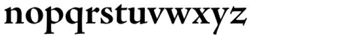 Adobe Jenson Pro SubHead Bold Font LOWERCASE